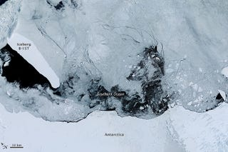 Illustration for article titled After 15 Years, A Massive Remnant Of Iceberg B-15 Remains Adrift