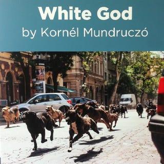 Illustration for article titled Közérdekű közlemény: Mundruczó Kornél lezárta az Alagútat!