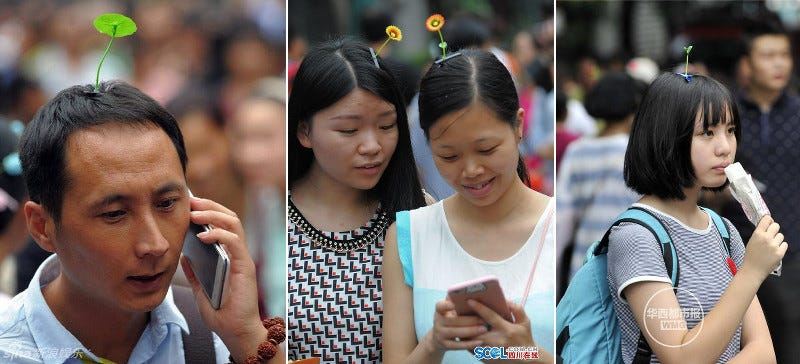 "Illustration for article titled ""Sprout Heads"" Are a Trend in China"