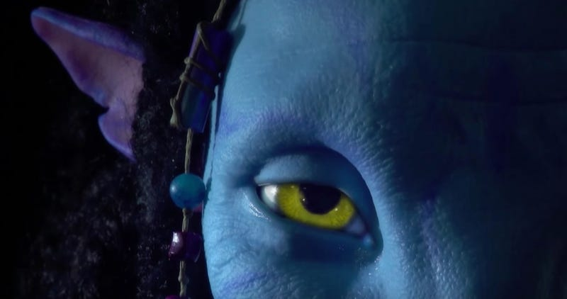 Illustration for article titled A New Video Teases the Natural Beauty of Disney's Upcoming Avatar Land