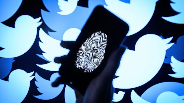 Twitter Takes Down 10,000 Accounts That Discouraged Voting