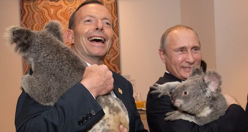 Happier times with some koalas (Getty)