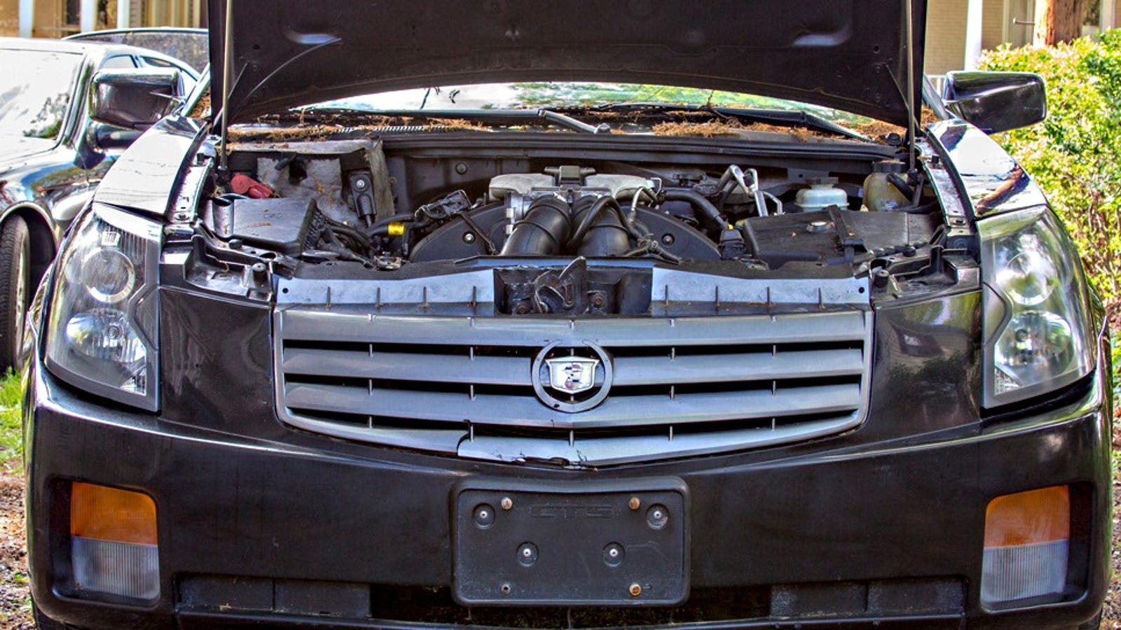Learn How I Got Burned On A Car Flipping Deal So You Dont Cts Fuel Filter