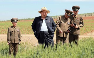 Illustration for article titled The only fat person in all of North Korea.