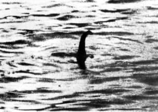 Illustration for article titled Nessie is real!