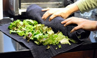Illustration for article titled Use a Bath Towel to Keep Salad Greens Fresh