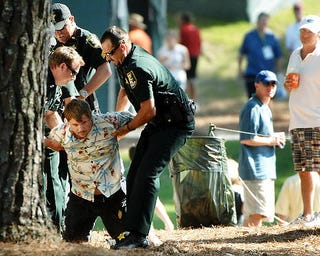 Illustration for article titled Drunk Golf Fan Taunts Tiger, Gets Tasered At The Players Championship