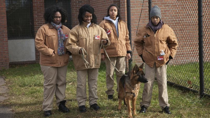 """Illustration for article titled Orange Is The New Black: """"The Chickening""""/""""WAC Pack"""""""