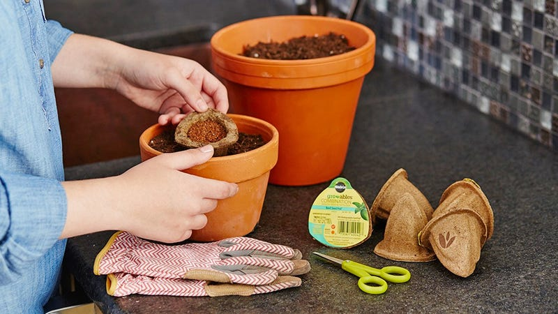 Illustration for article titled Keurig-Like Miracle-Gro Seed Pods Make Gardening Idiot-Proof