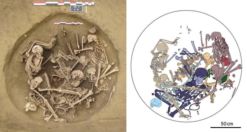 Illustration for article titled 6,000 Year Old Death Pit Points to One Hell of a Brawl
