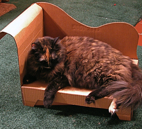 Illustration for article titled Make Your Own Cardboard Cat Chaise