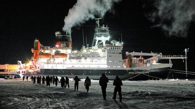 Ice-Locked Arctic Science Expedition Faces Challenges After Team Member Tests Positive for COVID-19
