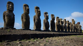 Illustration for article titled Does Easter Island hold the secret of reversing Alzheimer's Disease?