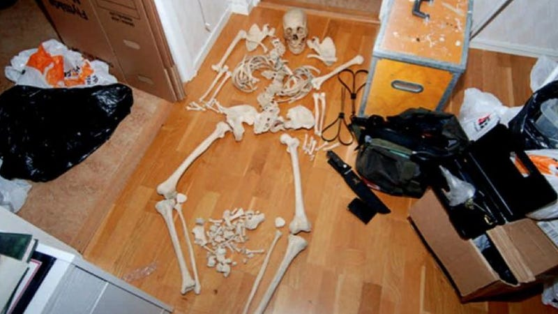 Illustration for article titled Swedish woman charged for sexing herself with human skeletons