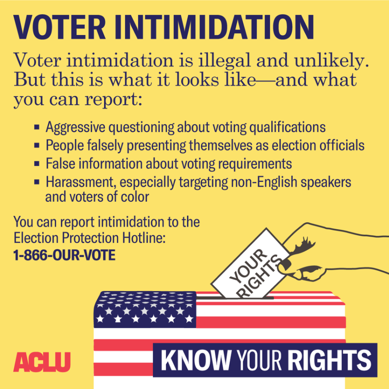 Illustration for article titled Know Your Rights and Protect Your Vote
