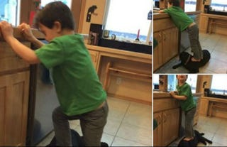 """Illustration for article titled Sarah Palin's Kid Stands on Dog; Palin Blames Dog for Being """"Lazy"""""""