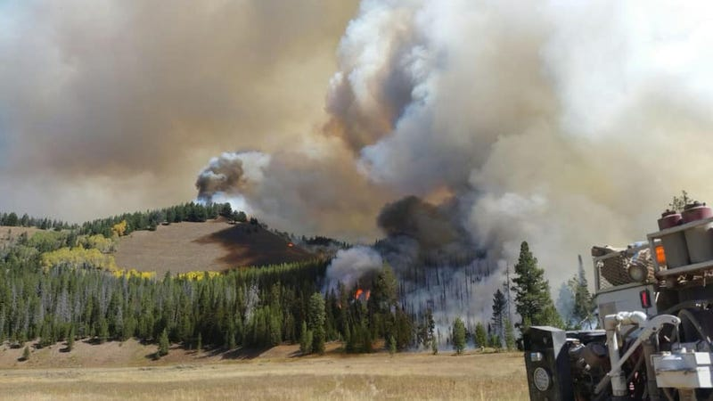 A wildfire in Bridger-Teton National Forest.