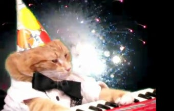 Illustration for article titled Keyboard Cat Celebrates New Year's With Fireworks and Song