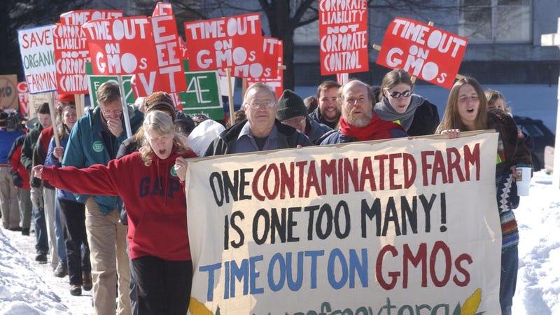 Anti-GMO protesters in Vermont.