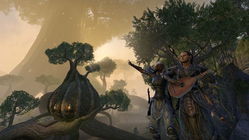 Illustration for article titled Checking in with our Elder Scrolls Online field correspondent