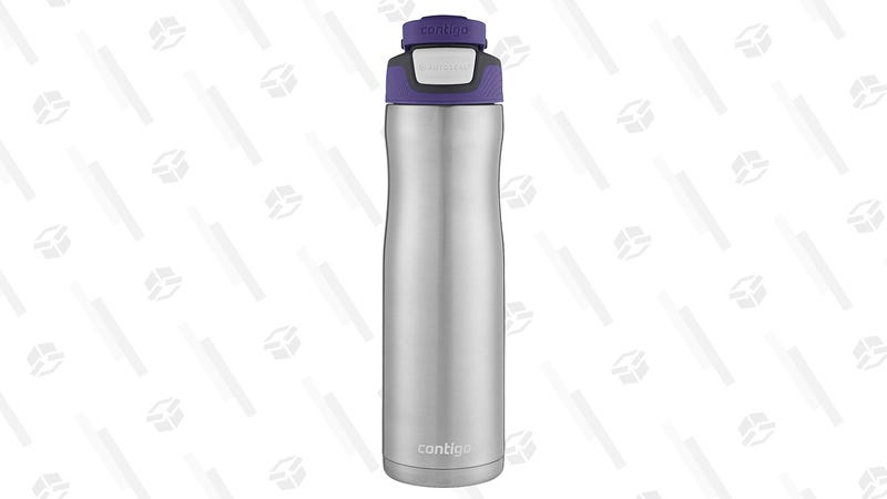 Contigo Autoseal Stainless Steel Water Bottle (Grapevine Color Only) | $13 | Amazon