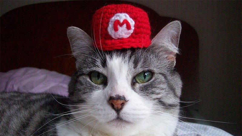 Illustration for article titled Your Cat Needs Tiny Little Nintendo Hats, OK?