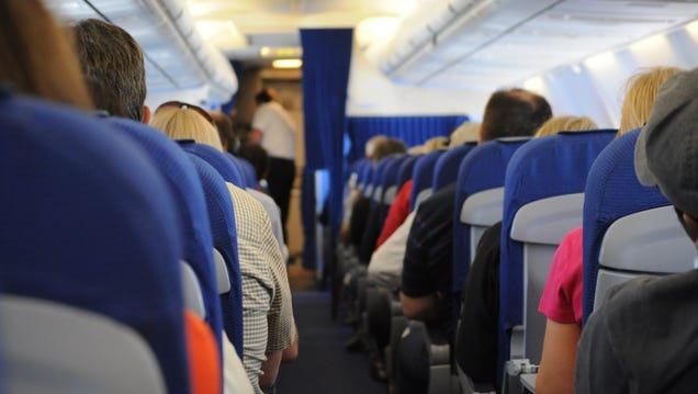 How to Make Economy Class Tolerable on a Long Flight