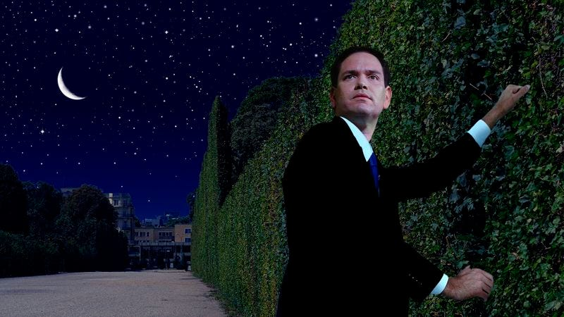 Illustration for article titled Marco Rubio Climbs Over Garden Wall For Forbidden Midnight Meeting With Super PAC
