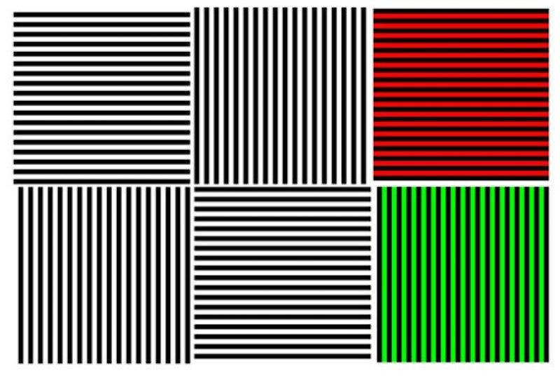 Illustration for article titled El efecto McCollough, o cómo una simple imagen puede hackear tu cerebro durante meses