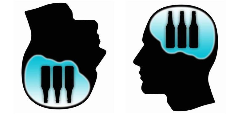 ¿Qué le ocurre al cerebro cuando te emborrachas y no recuerdas nada?