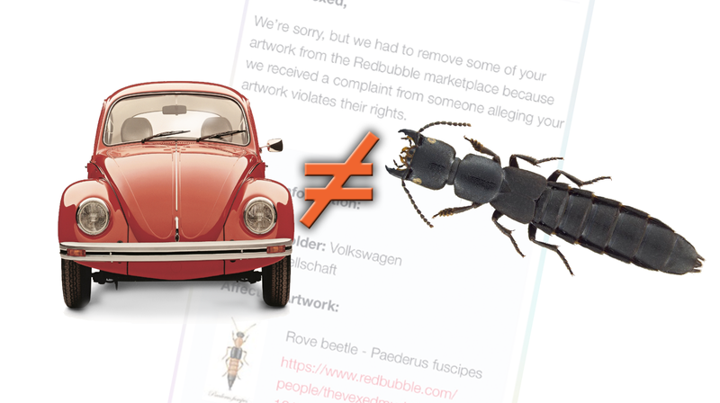 "Illustration for article titled Volkswagen Keeps Having To Be Reminded It Doesn't Own The Word ""Beetle"""