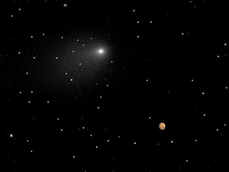 Illustration for article titled Comet Siding Spring and Mars In One Beautiful Image