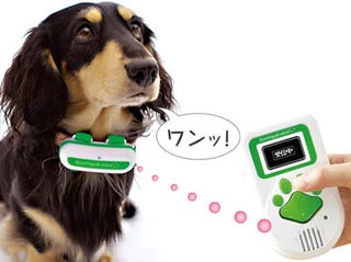 Illustration for article titled Bowlingual Discovers that Every Dog Has an Inner Japanese Woman