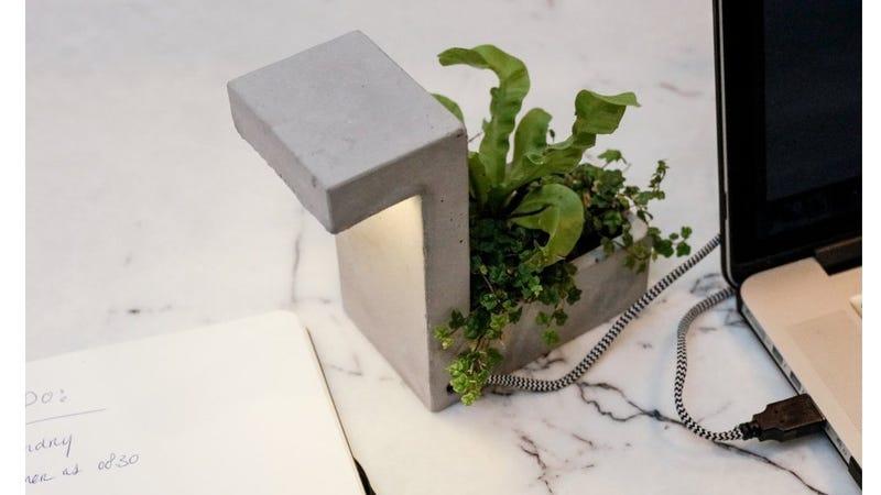 Kikkerland Blok lamp | $22 | Amazon
