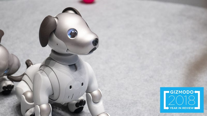 Buck up Aibo. It's not just you.