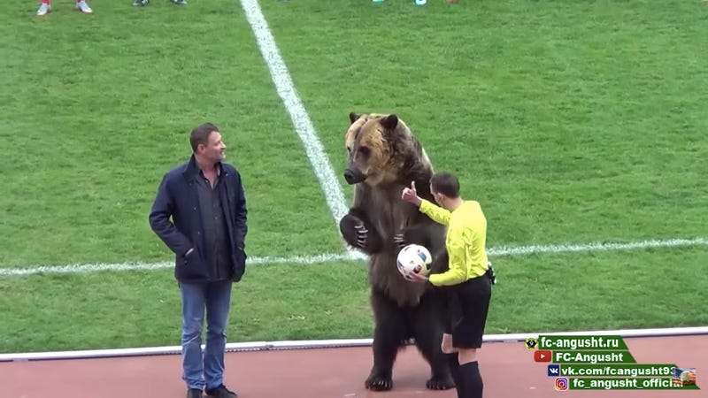Illustration for article titled Enormous, Real-Life Bear Oversees Kickoff Of Russian Soccer Match