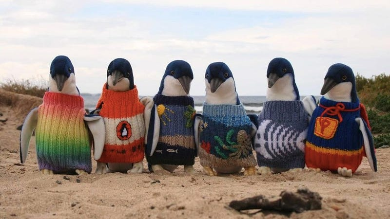 Illustration for article titled These Penguins In Sweaters Are Fake
