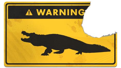 Image result for alligator survival tip