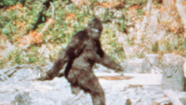 Routine Bigfoot Hunt In Oklahoma Ends With 3 Arrests 1