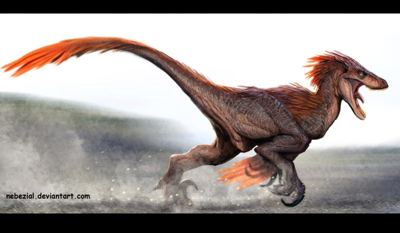 Here is why dinosaurs with feathers were f king scary - Dinosaure raptor ...