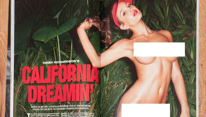 Illustration for article titled Playboy Set to Release an Issue Shot Entirely by Terry Richardson