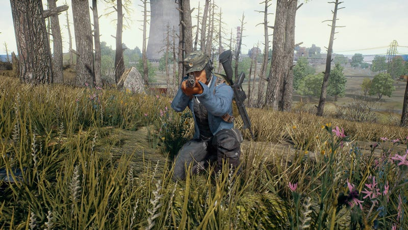 PlayerUnknown's Battlegrounds has been a breeding ground for toxic behavior