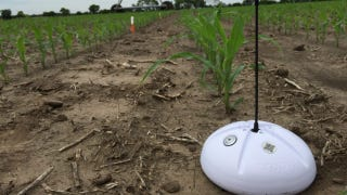 Illustration for article titled Soil Sensors Can Cut Farms' Water Use By a Quarter During Drought