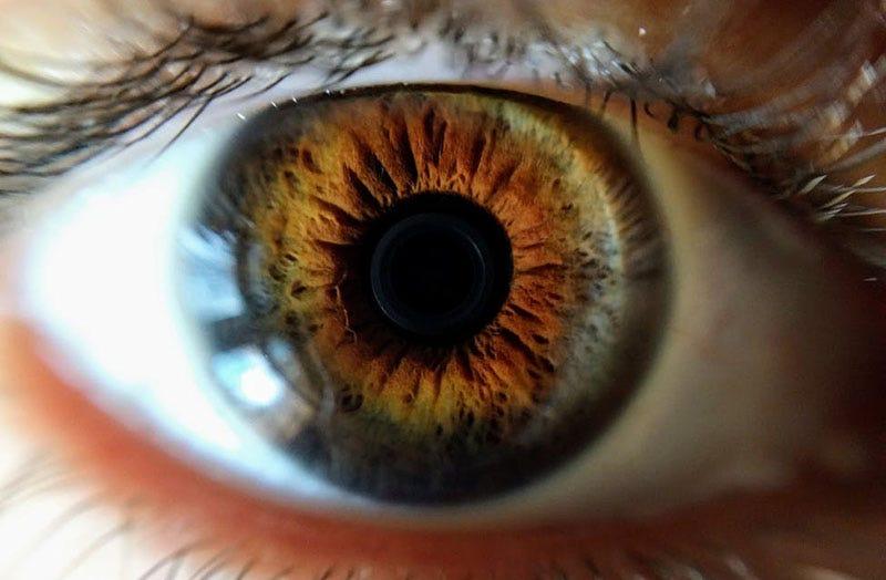 Illustration for article titled Científicos desarrollan un prototipo de lentes de contacto blandas que hacen zoom al parpadear dos veces