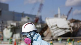 Illustration for article titled Fukushima Update