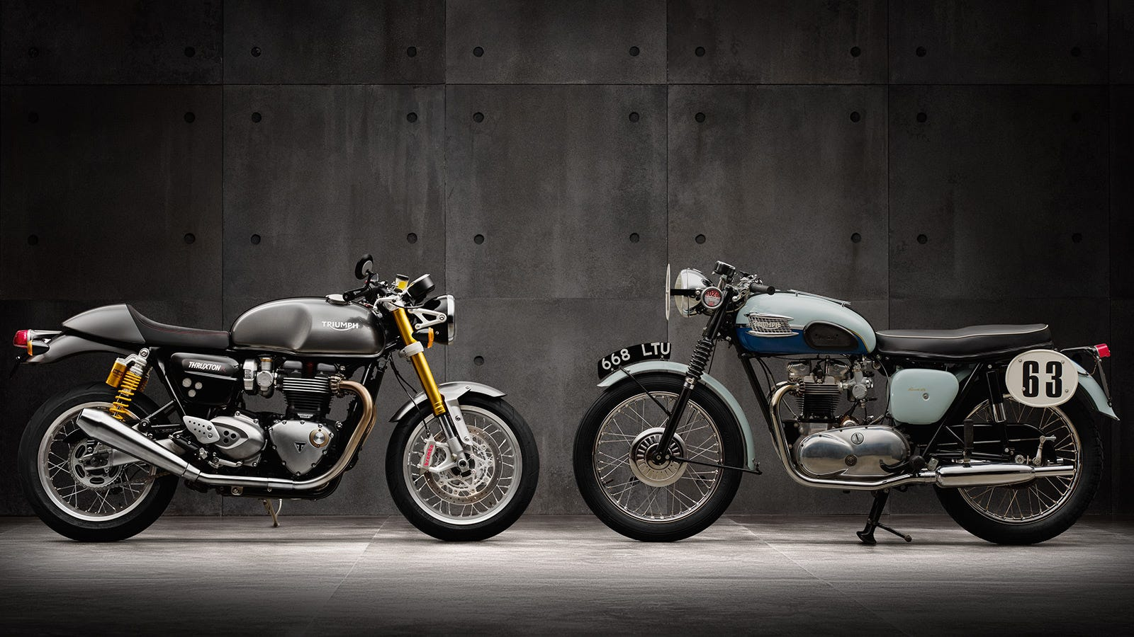 triumph thruxton r news, videos, reviews and gossip - jalopnik
