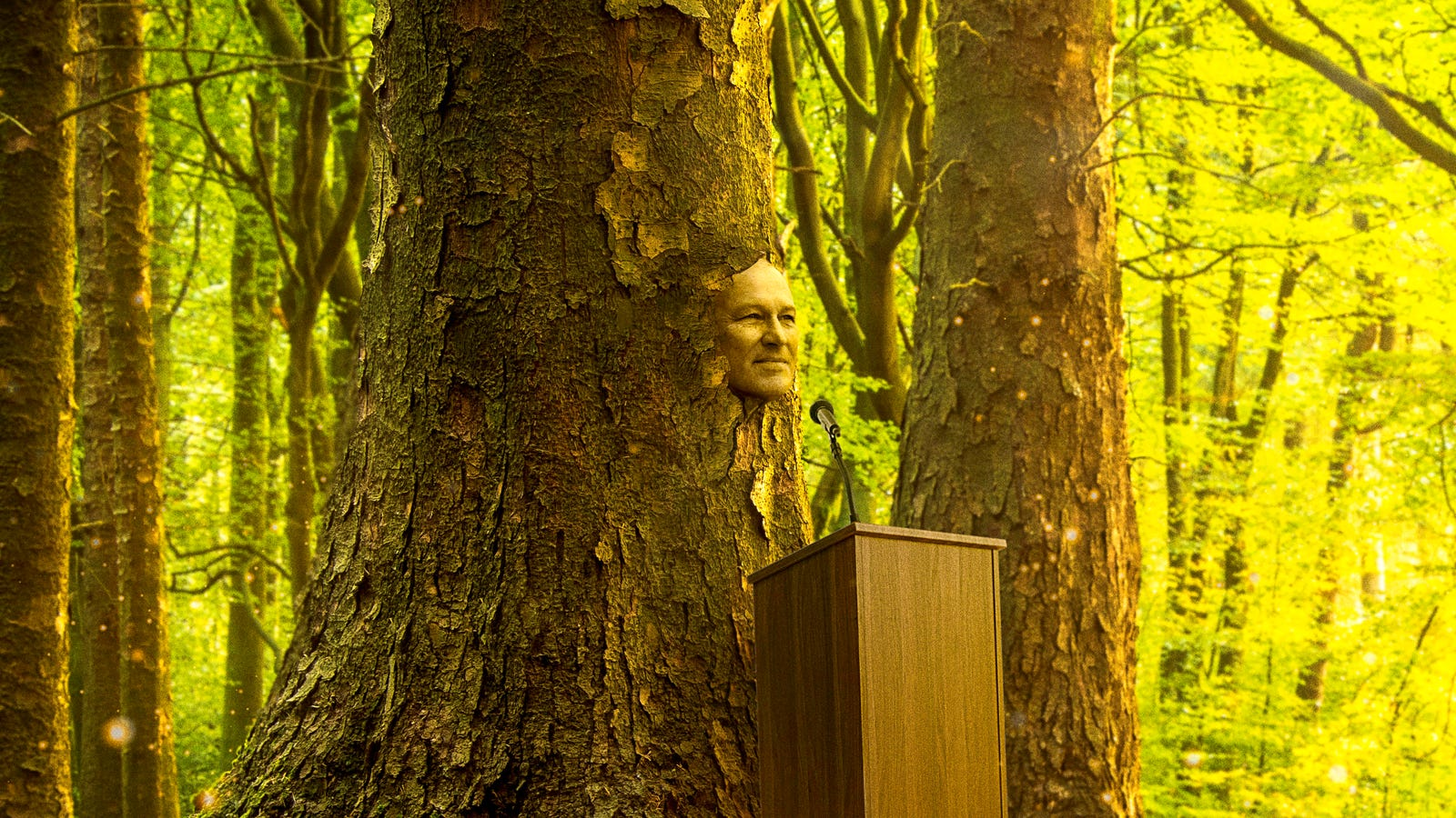 'Don't Worry, I'll Always Be Here To Fight Climate Change,' Says Jay Inslee Before Ethereally Turning Into Majestic Oak