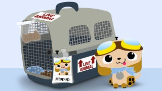 Illustration for article titled What to Do and What to Avoid When Traveling with Your Pet