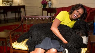 First lady Michelle Obama with family pets, Sunny and Bo Official White House Photo by Amanda Lucidon