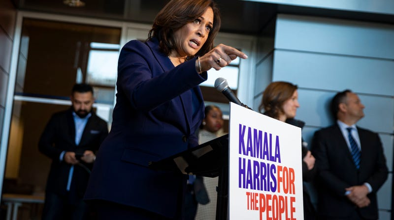 Illustration for article titled MAGA Troll Reboots Birther Conspiracy for Kamala Harris